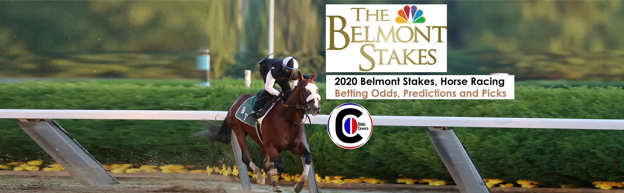 Belmont stakes 2021 betting odds bet on cricket online